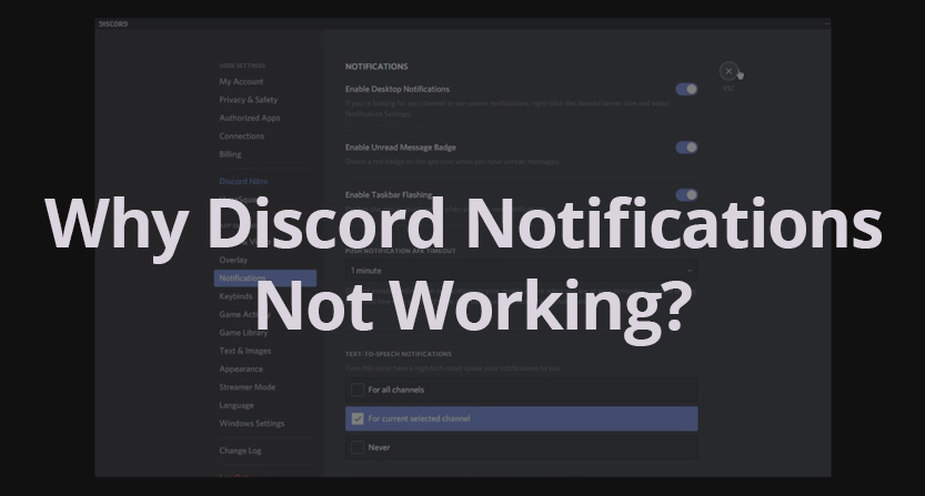 Discord not working